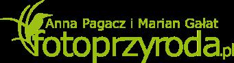 Galeria autorska Anny Pagacz i Mariana Gałat